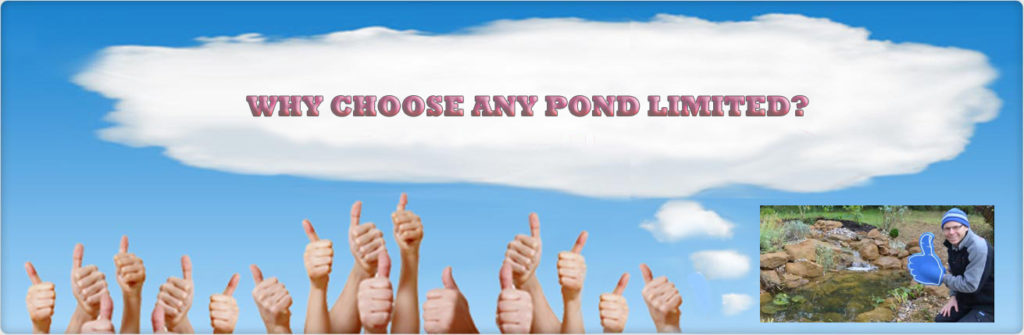 about-any-pond-limited