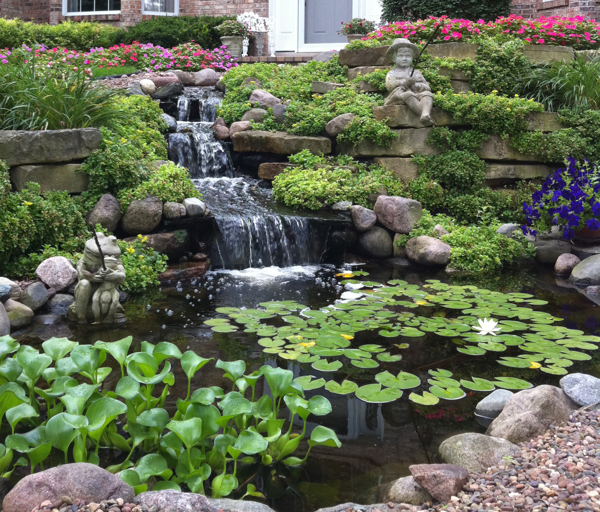 Pond cleaning quick service calls by any pond limited for Fish pond maintenance