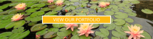 fish pond builders portfolio