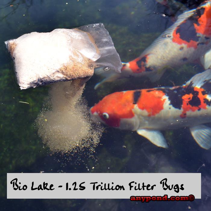 Bio Lake Treatment