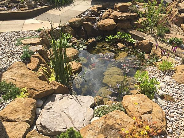 Formal Raised Garden Pond