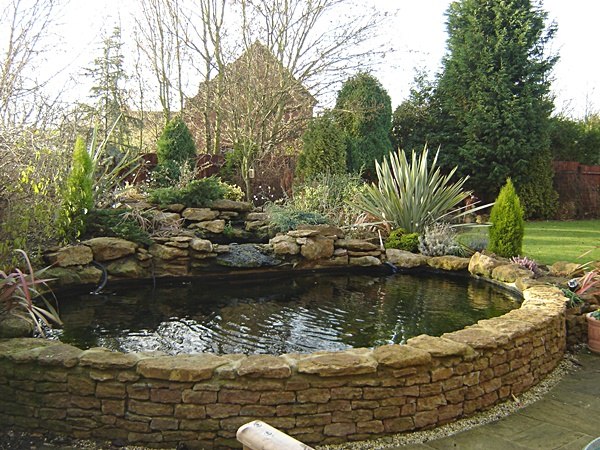 Raised pond gallery small fish ponds garden ponds for Small pond construction