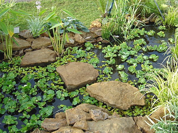 Natural looking water feature gallery garden pond for Garden pond specialists