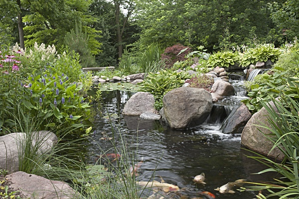 Natural pond gallery small fish ponds garden ponds for Landscaping around koi pond