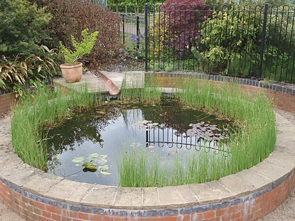 raised pond gallery small fish ponds garden ponds. Black Bedroom Furniture Sets. Home Design Ideas