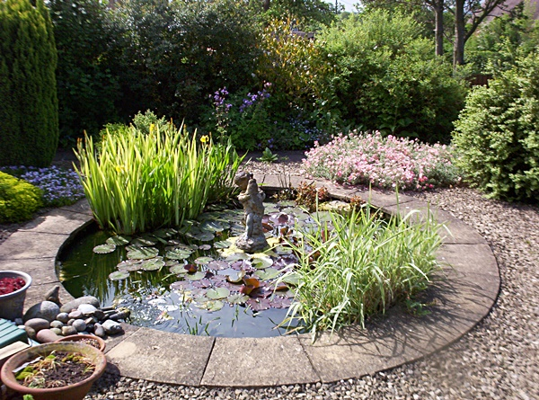 Formal pond gallery garden pond specialists in the for Garden pond specialists