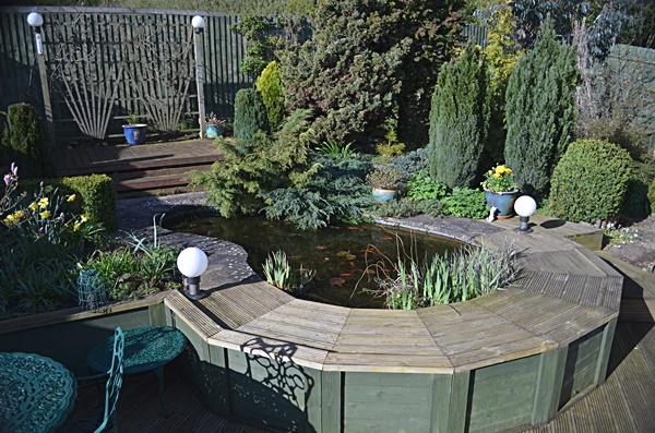 Raised pond gallery garden pond specialists in the for Garden pond specialists
