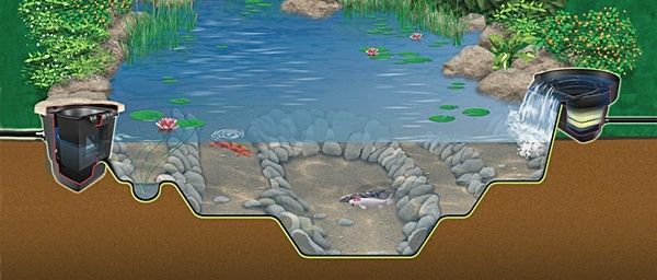 Natural Pond Gallery ⋆ Small Fish Ponds Garden Ponds