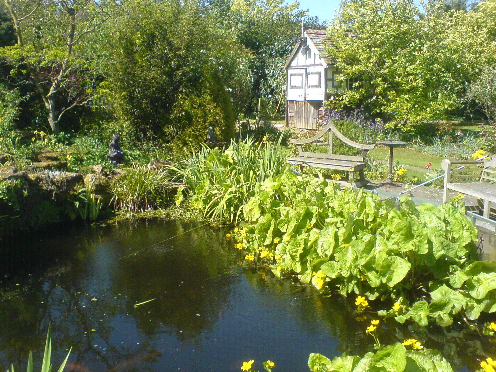 What S Wrong With My Garden Pond Water: Quick Service Calls By Any Pond Limited
