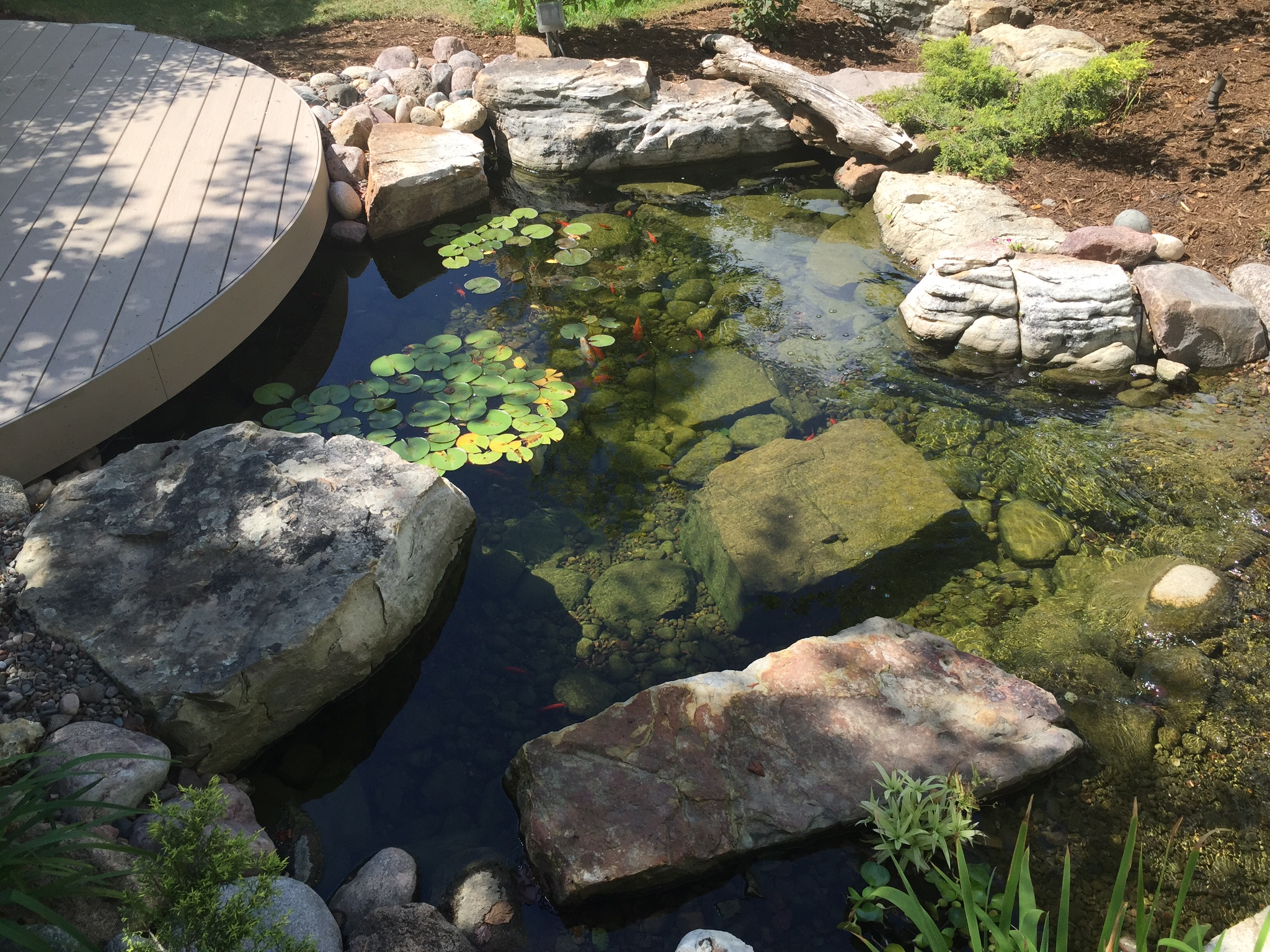 Rocks and gravel substrate pond design garden pond for Koi pond rocks
