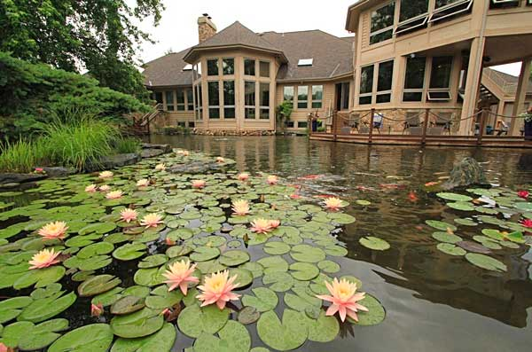 anypond-pond-cleaning-services-midlands-uk-2