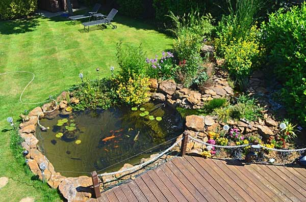 Pond cleaning services in the midlands uk garden pond for Natural fish pond