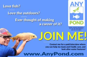 Pond Job Opportunities, Full and Part time Positions Vacancies