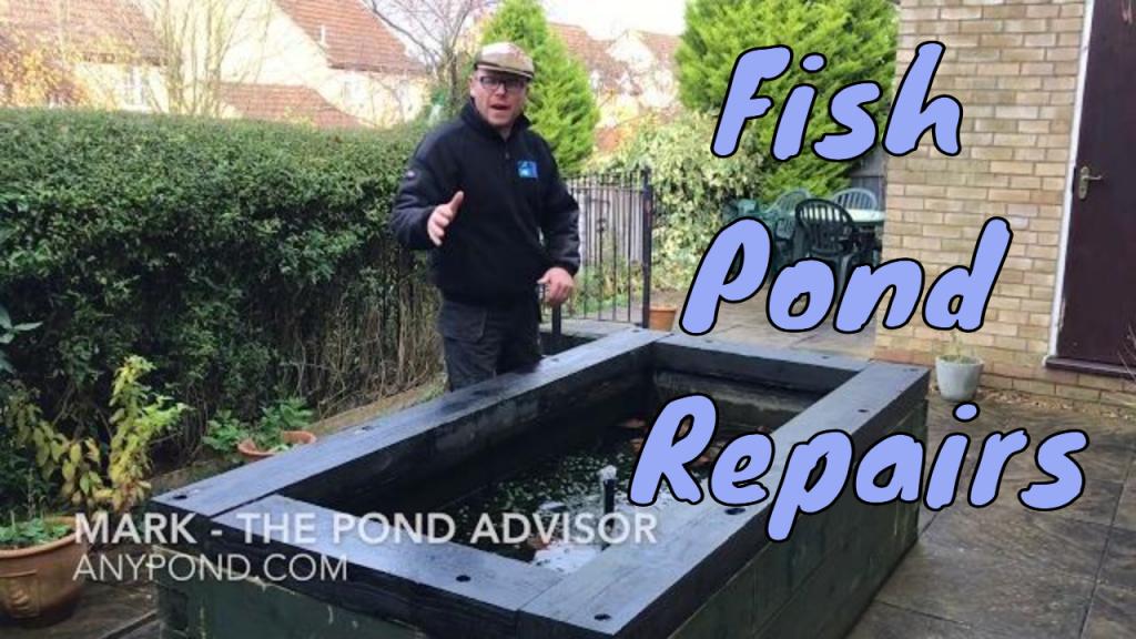 Fish Pond Repairs
