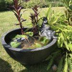 Small Patio Pond Frog Upgrade